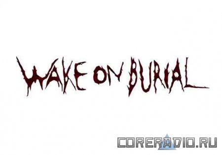 Wake On Burial – Across The Population (2011)